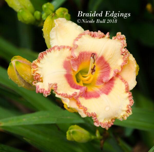 Braided edgings