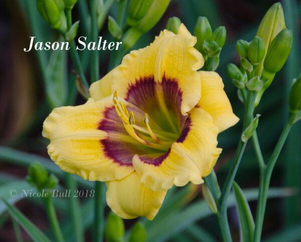 Jason Salter